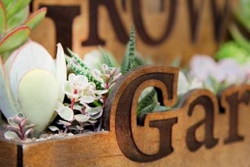 Garden (арт. 6.14)